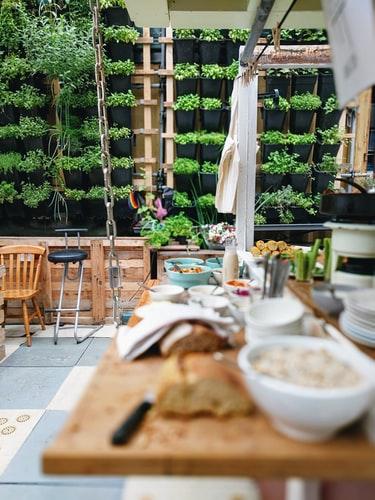 zielone ściany zroślin